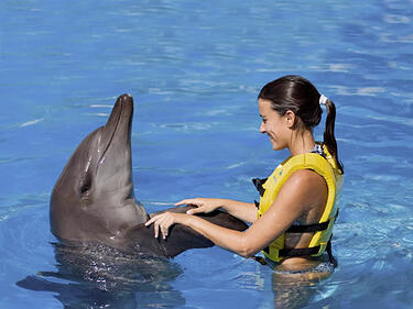 Swim_with_the_Dolphins_Cancun